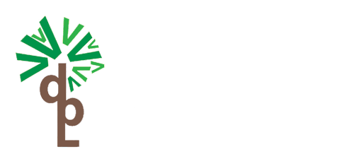 Valion developers